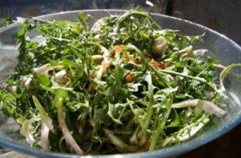 Salata od Maslačka